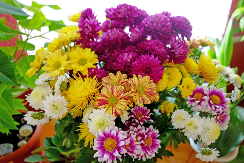 Large Bouquet Of Beautiful Flowers Stock Photo - Image of pollen ...