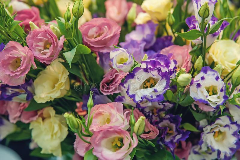 A large bouquet of multi-colored alstroemerias in the flower shop are sold in the form of a gift box. The farmer`s market. Close. Up. The horizontal frame stock photo