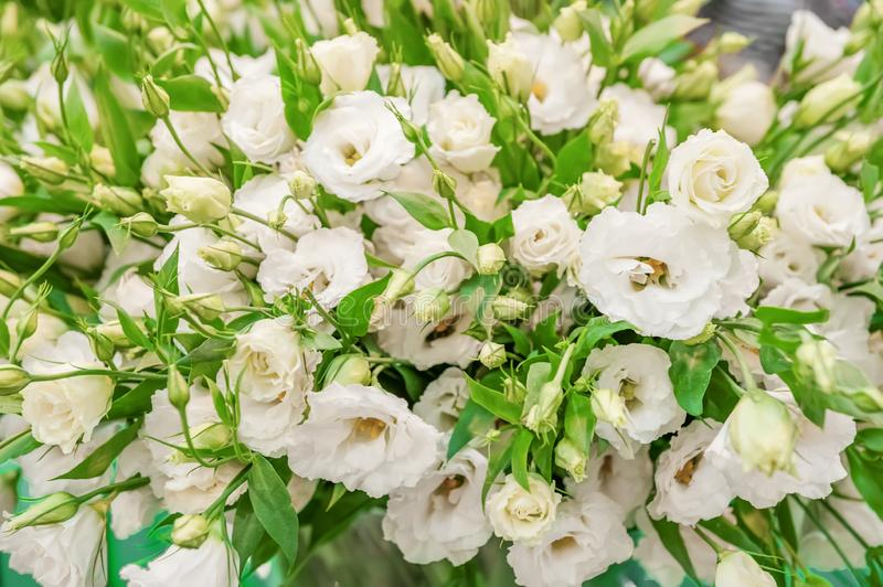A large bouquet of white eustoma in a flower shop is sold as a gift box. Farmer`s market. Background.  stock photos