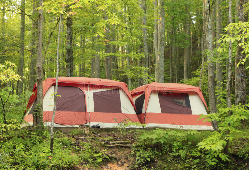 Download Large Brightly Colored Family Camping Tents In The Woods Stock Image