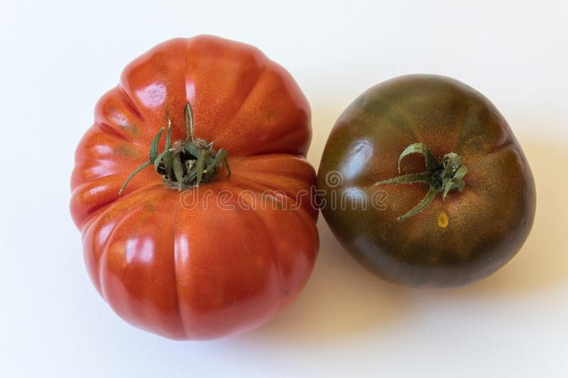 Large Cherokee purple and Montserrat type organic heirloom tomatoes isolated on white stock photo