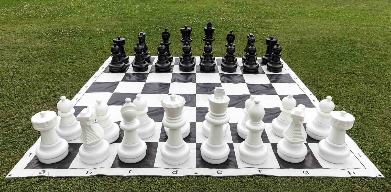 Large chess on garden grass stock photo