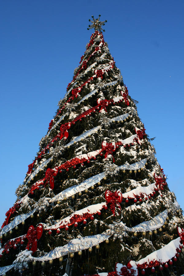 Download Large Christmas Tree Royalty Free Stock Images - Image: 36330419