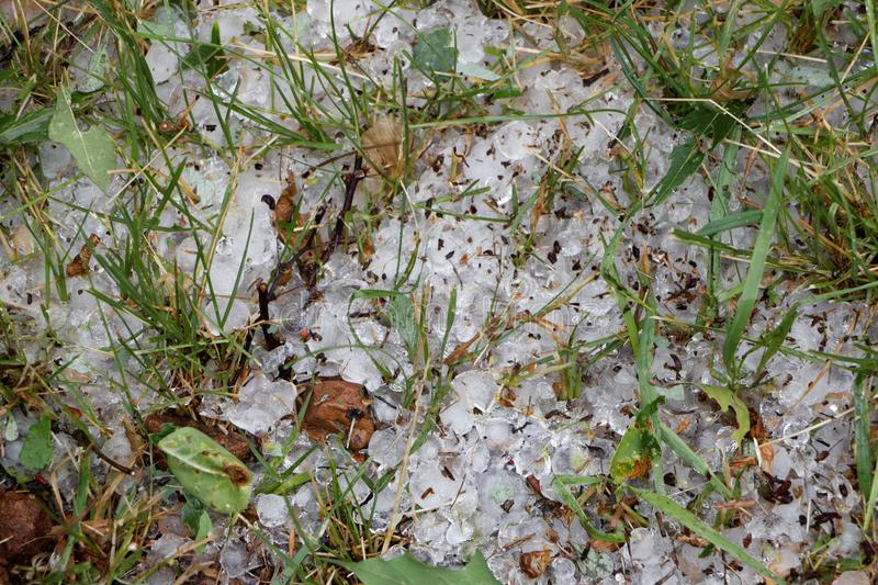 Large chunks of hail in the grass. After a storm royalty free stock photography