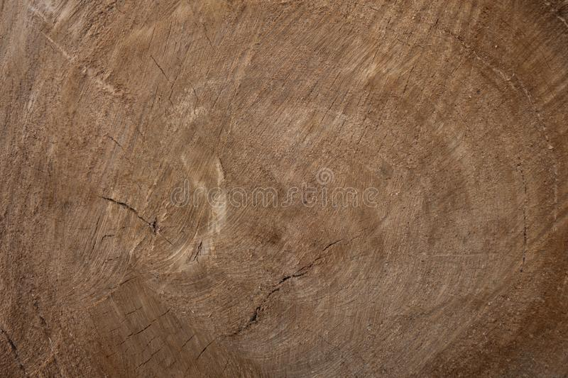 Large circular piece of wood cross section with tree ring texture pattern and cracks. Cross section of the tree. Creative vintage stock images