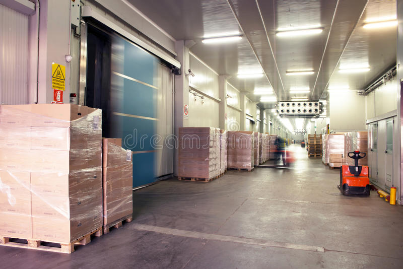 Large cold warehouse. Frozen food at shelves in cold warehouse stock images