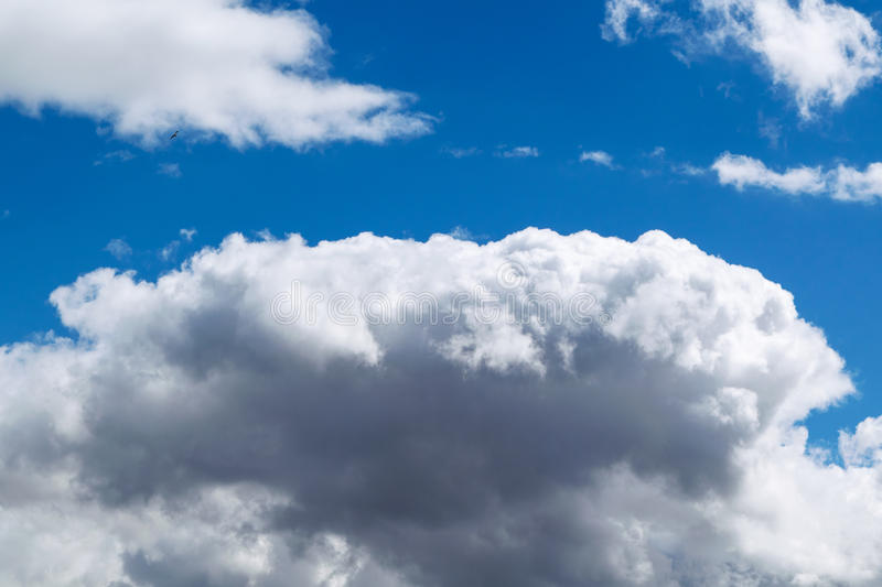 A large Cumulus cloud in the blue sky. In the top left corner flies a little gull. A large Cumulus cloud in the blue sky. A bright Sunny day. In the top left royalty free stock photography
