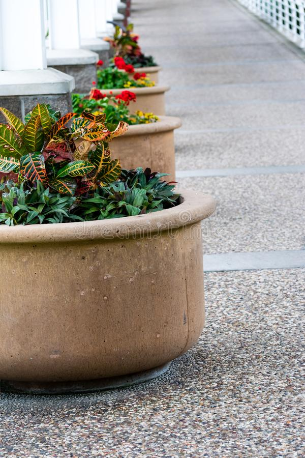 Large decorative planters filled with greenery line the sidewalk stock photography