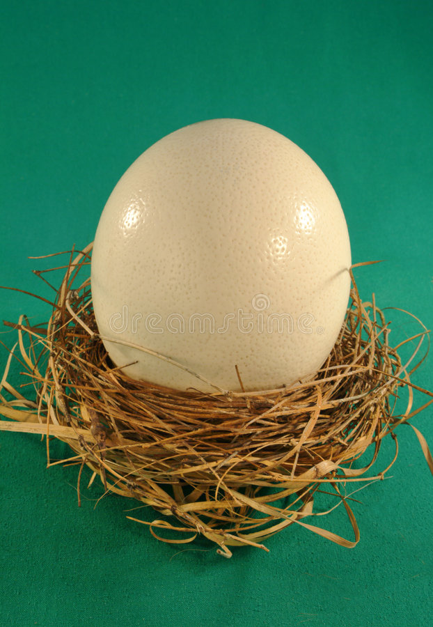 Large egg in a small nest royalty free stock image