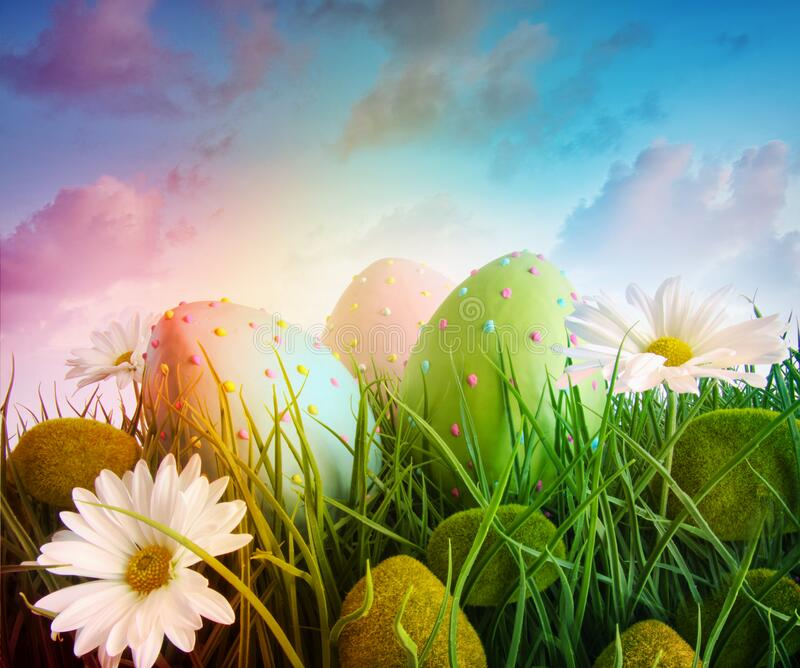 Large eggs with daisies in grass with rainbow  color sky royalty free stock photos