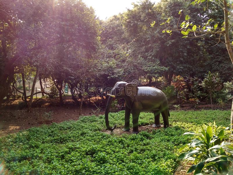 A large elephant royalty free stock images