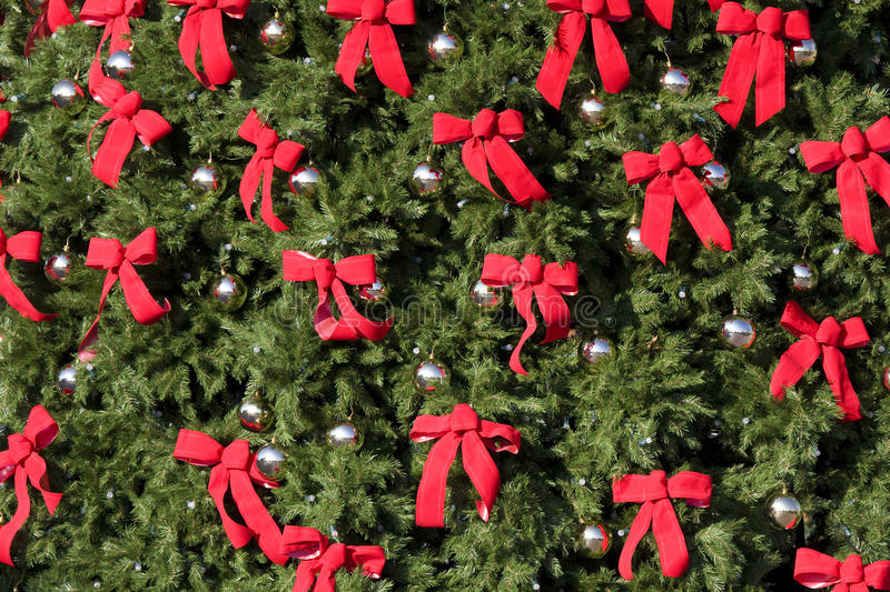 Download Large Evergreen With Red Bows Stock Image - Image: 12081531