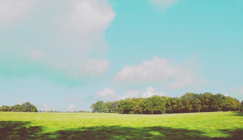Large field and blue sky version 2 stock image