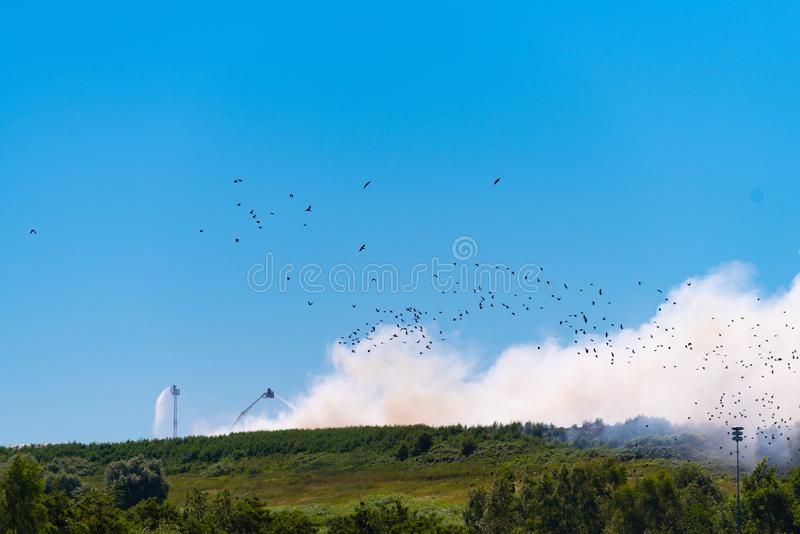 Large fire at a waste processing company stock photos