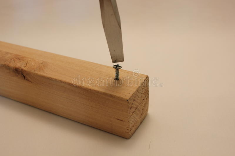 Large flat head screwdriver and in wood. The wrong screwdriver used to in a royalty free stock images