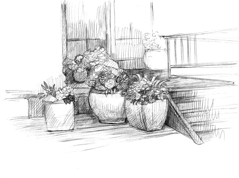 Large flowerpots with flowers are at the entrance to the house. Black and white illustration royalty free illustration
