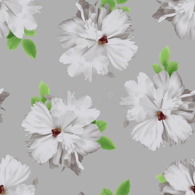 Large flowers on grey background. The repeating floral pattern of blooming peonies with leaves. Large flowers on grey background stock illustration