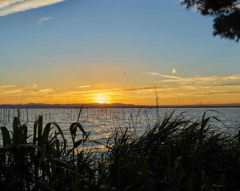 Large format in high resolution Panoramic sunset in the Albufera of Valencia. Spain stock photos