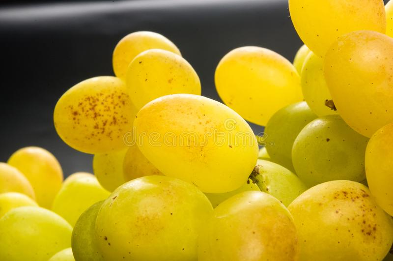Large grapes cluster royalty free stock photo
