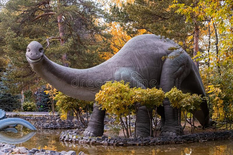 Dinosaur world. A large gray adult brachiosaurus looks towards the frame and stands on the stone bank of the river, next to small trees and shrubs on a warm royalty free stock images