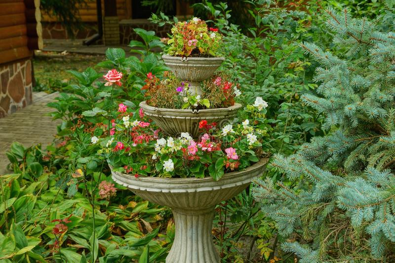 Large gray concrete flowerpot with flowers among green vegetation. In the park royalty free stock image