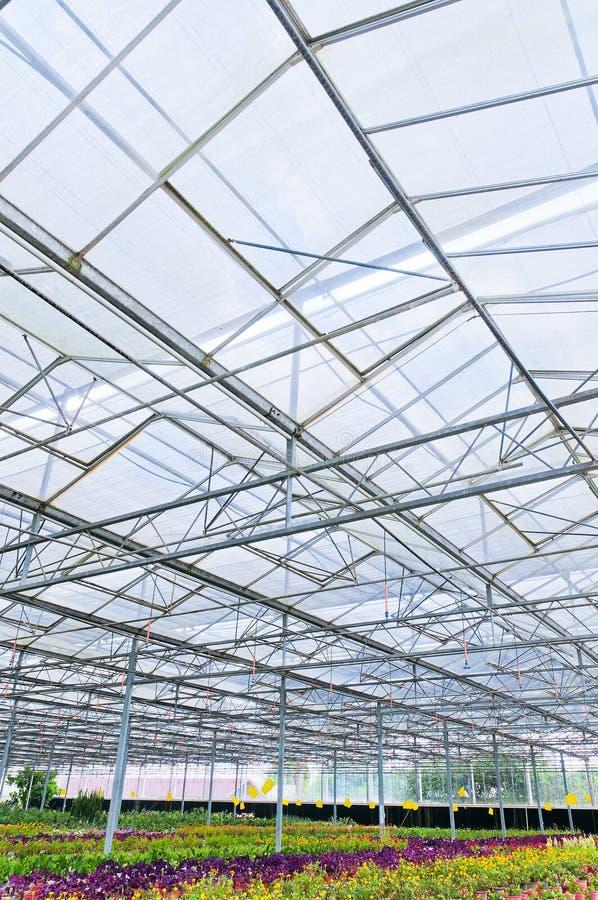 Download Large greenhouse stock photo. Image of large, biotechnology - 22193058