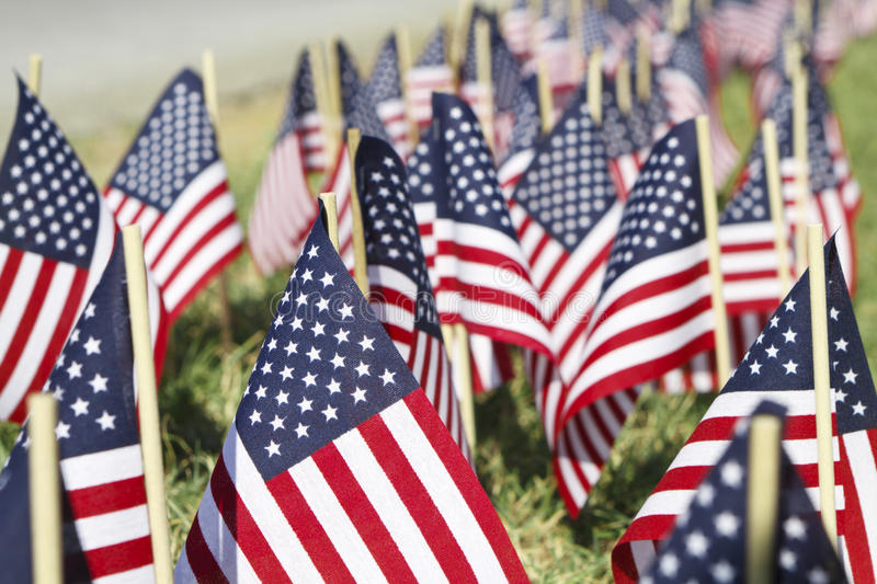 Large Group of American Flags - Shallow DOF. A very shallow DOF shot of large group of small American Flags stuck into the ground along a roadway royalty free stock photo