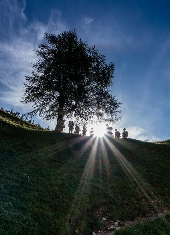 Large group of hikers in silhouette take a break under a tree with the sun shining through them. Group of many hikers take a break and rest under a tree in royalty free stock image