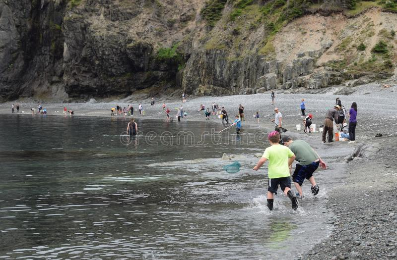 Large group of people waiting for the Caplin to roll stock image