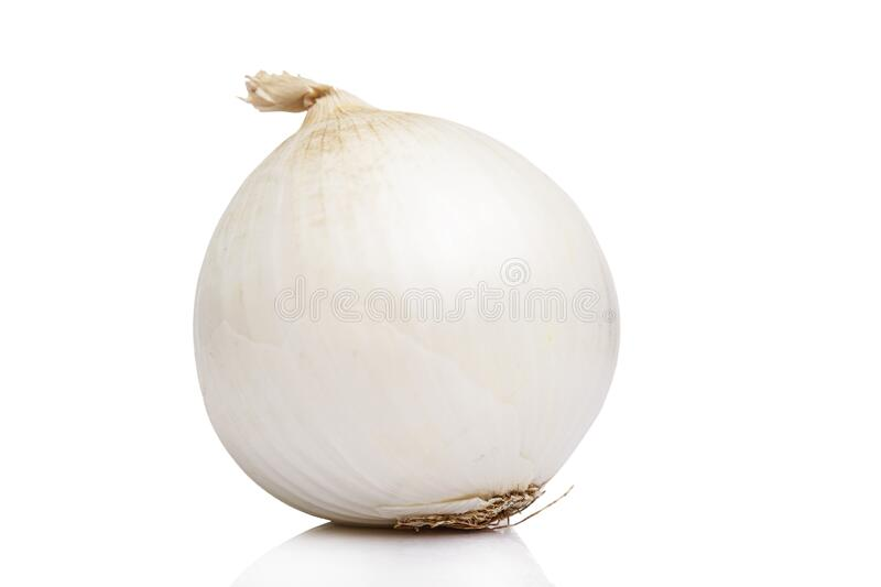 Large head of white onion. Healthy eating and vegetarianism. Virus protection during an epidemic. Isolated on a white background.  royalty free stock photo