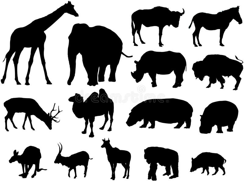 Large herbivores. Silhouettes from large herbivores around the world royalty free illustration