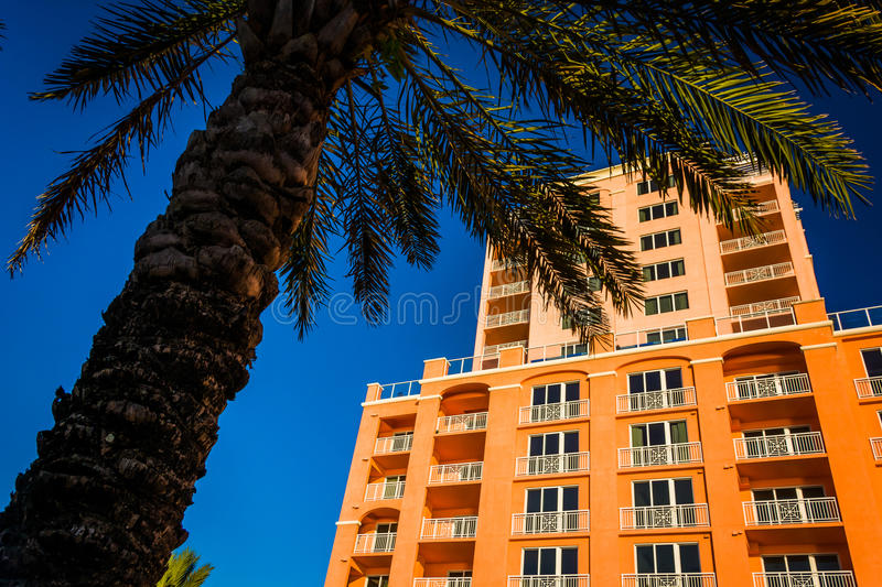 Large hotel and a palm tree in Clearwater Beach, Florida. Large hotel and a palm tree in Clearwater Beach, Florida royalty free stock photography