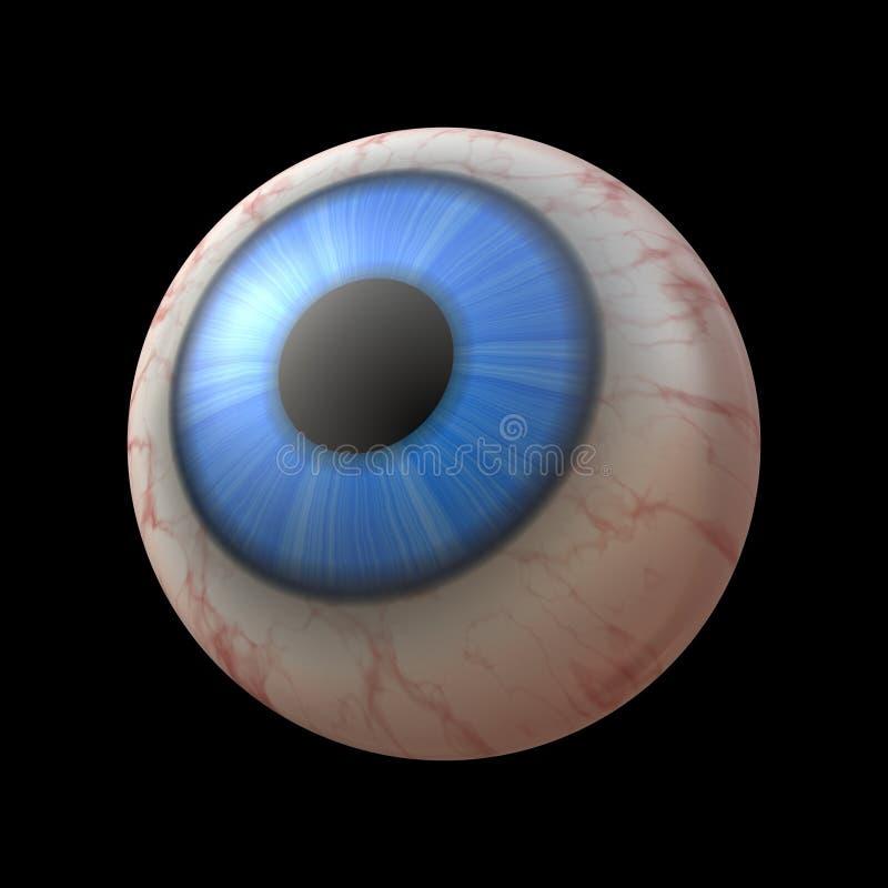 Large human eyeball vector illustration