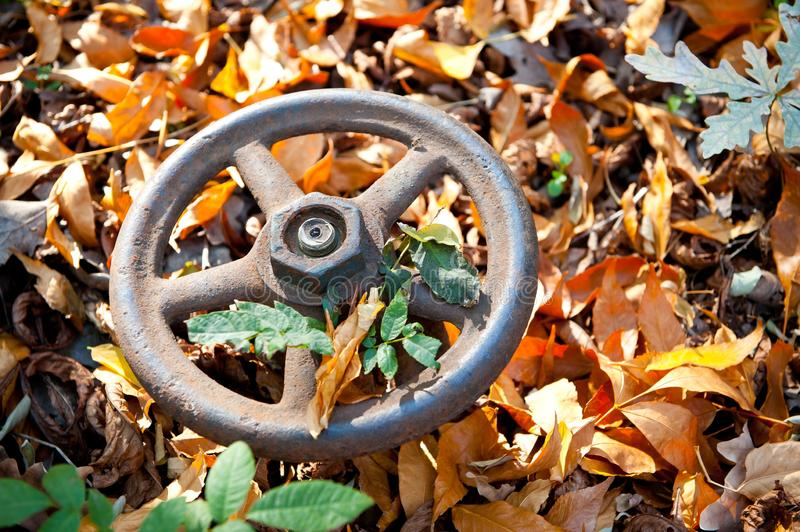 Large iron and rusty water valve on the background of fallen autumn leaves stock photography