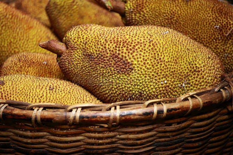 Large Jack Fruit With Large Spikes Royalty Free Stock Photography