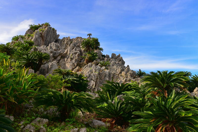 Large limestone rock formations in Daisekirinzan park in Okinawa. Japan royalty free stock photography