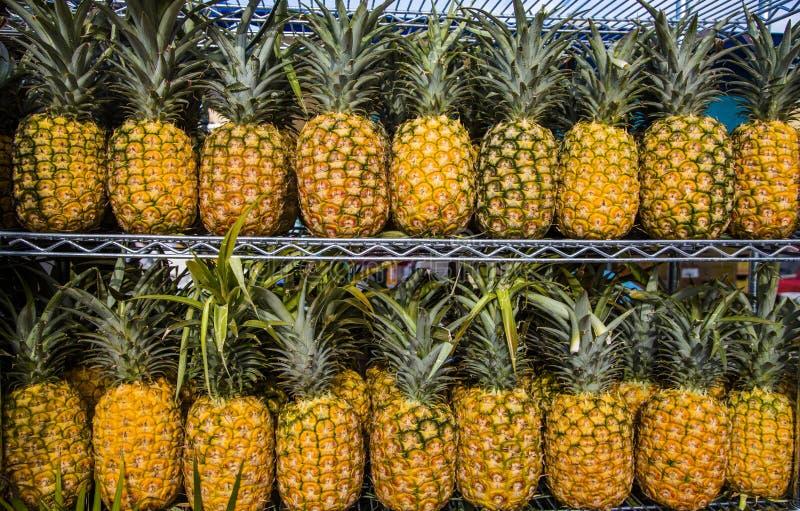 Large market shelf full of fresh ripe pineapples. Pineapple background royalty free stock photos