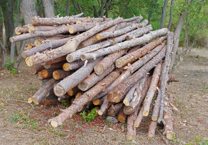 A large number of firewood. Neatly laid for later use stock photos
