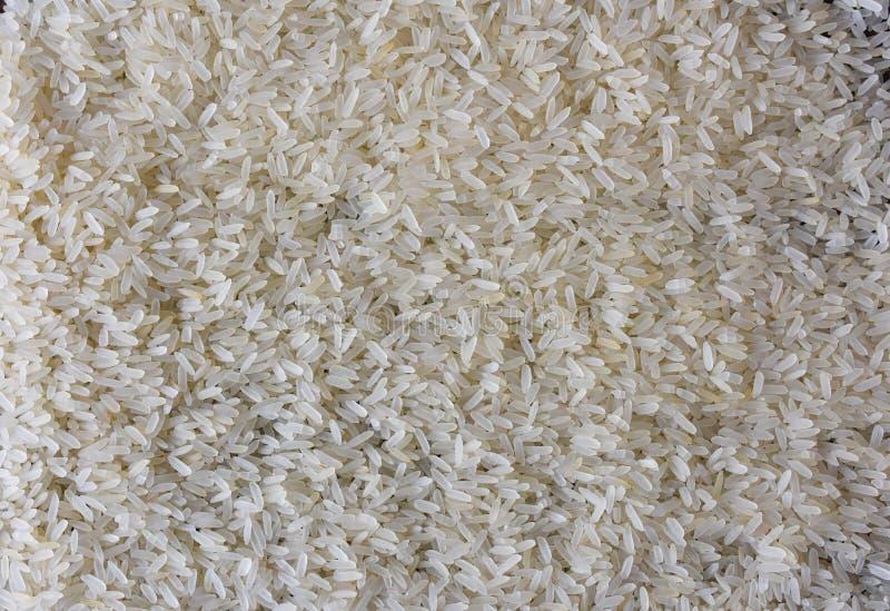 Rice long grain close up royalty free stock images