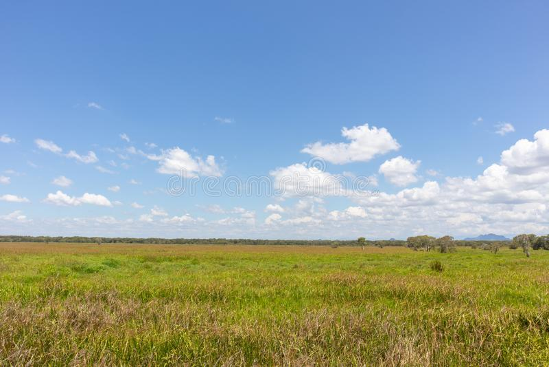 Outdoor grass field at Phatthalung, Thailand. Large outdoor grass field at Phatthalung, Thailand stock image