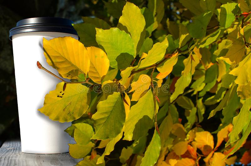 Paper cup with coffee is standing on the wooden table inn on the autumn park with yellow leaves background royalty free stock image