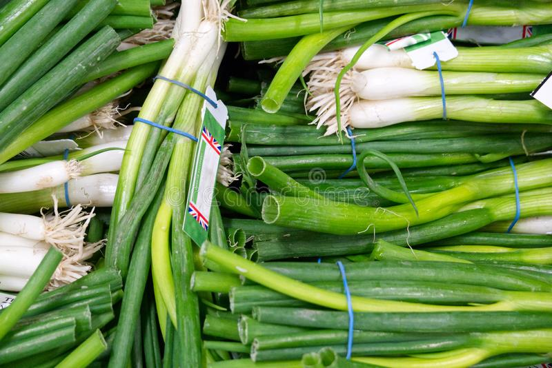 Large pile of fresh spring Onions sale at the grocers stock image
