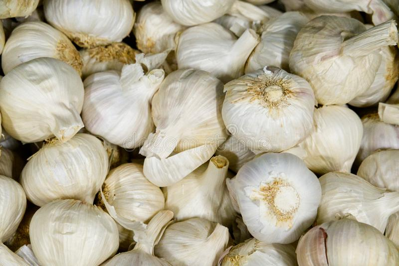Large pile of garlic bulbs for sale at the grocers royalty free stock images