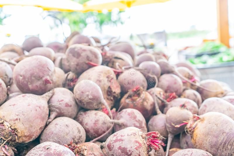 Large pile of red beet root vegetables, dried and cured, harvested and being sold at a farmer`s market. Soft, hazy lighting royalty free stock photos