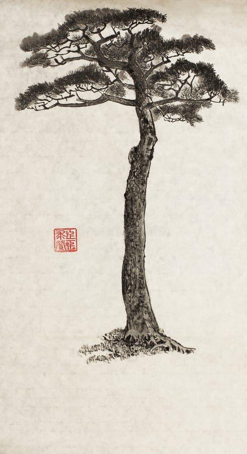 Large pine tree royalty free illustration