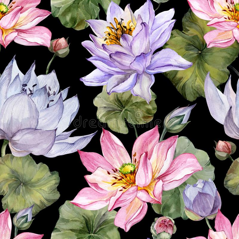 Large pink and purple lotus flowers with leaves on black background. Beautiful floral seamless pattern. stock illustration
