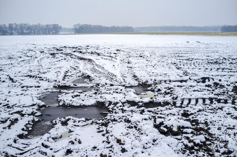 Large plowed field is covered with fresh snow, a forest can be seen on the horizon, on a winter day. Rural landscape stock photos