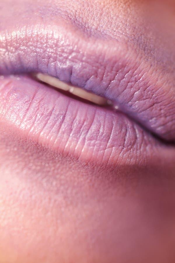 Large plump lips. royalty free stock photos