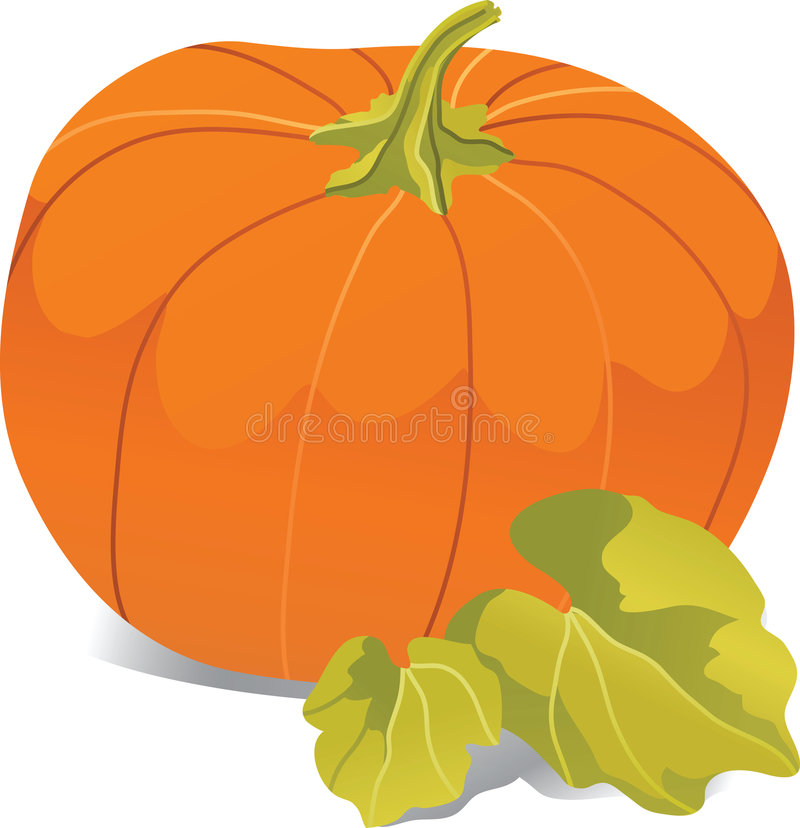 Large Pumpkin royalty free illustration