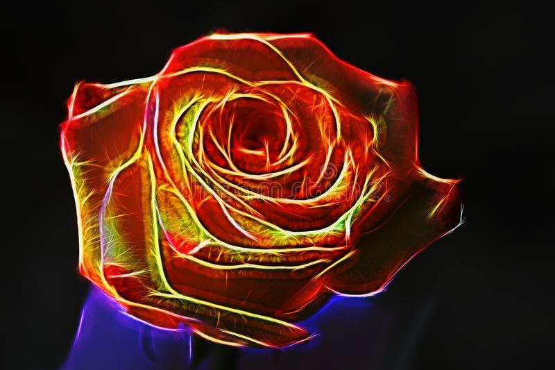 Large red rose neon effect. The glow effect. Surrealism. Dark ba stock image